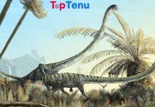 Tanystropheus